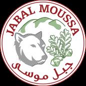 apjm Logo
